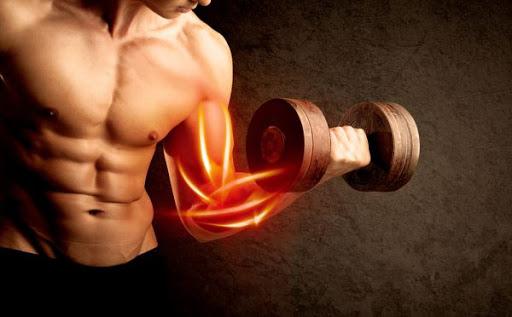 Collagen giúp duy trì khối lượng cơ
