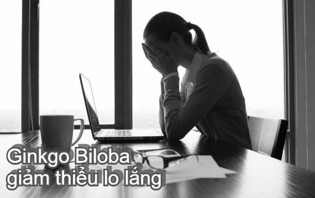 Ginkgo Biloba giảm thiểu lo lắng